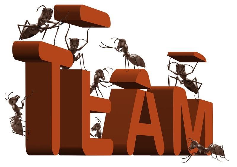 When Team Building Does NOT Work | Learn more here...